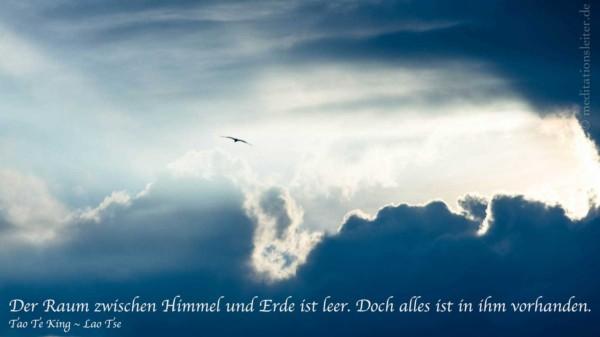 Möwe Über den Wolken ~ Zitat Lao Tse