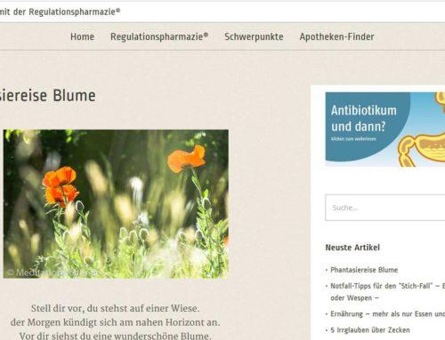 """Unsere Phantasiereise """"Die Blume"""" auf Natürlich-Netzwerk.de"""