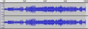 Vogestimmen Vogelgesang Vogelmusik im heimischen Frühlings-Wald